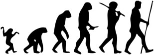 Human_evolution_scheme.svg